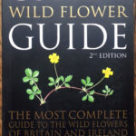 Collins Wild Flower Guide - www.booksonthelane.co.uk