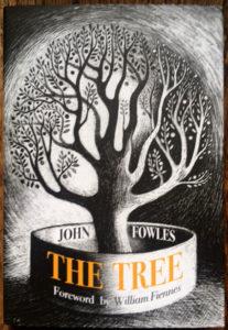The Tree - www.booksonthelane.co.uk