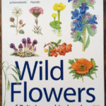 Wild Flowers of Britain and Ireland - www.booksonthelane.co.uk