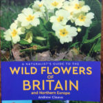Wild Flowers of Britain and North Europe - www.booksonthelane.co.uk