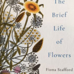 The Brief Life of Flowers - www.booksonthelane.co.uk