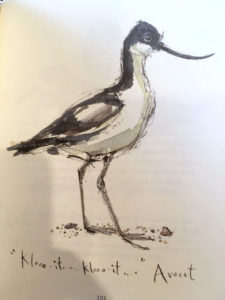 Avocet birdsong - www.booksonthelane.co.uk