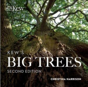 Kews Big Trees - www.booksonthelane.co.uk