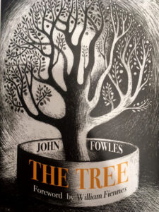 The Tree - www.booksonthelane.co.uk
